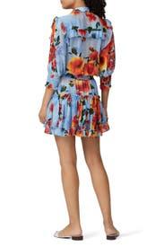 Sheer Enya Dress by MISA Los Angeles