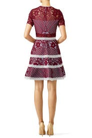 Burgundy Rustikan Dress by Alexis