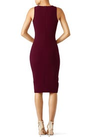 Plum Park Dress by LIKELY
