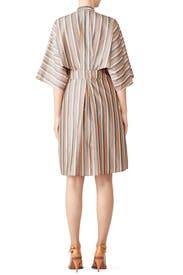 Candy Stripe Dress by Tome