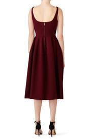 Raisin Full Skirt Dress by Jill Jill Stuart