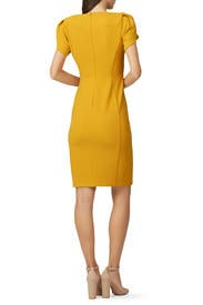 Short Sleeve Marigold Dress by Donna Morgan