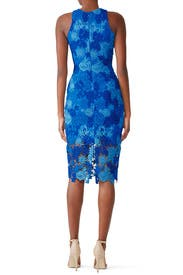Blue Floral Lace Sheath by Alexia Admor
