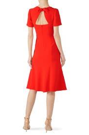 Orange Rose Dress by Diane von Furstenberg