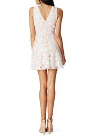 Tori Garden Dress by Jay Godfrey