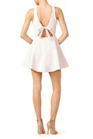 Pink Britt Dress by Elizabeth and James