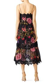 Black Peony Popover Dress by Nicholas