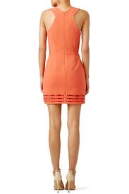 Coral Millany Laser Cut Dress by Greylin