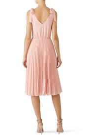 Blush Left Bank Dress by Ali & Jay