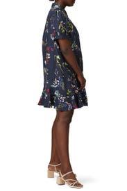 Aliciana Dress by Tanya Taylor
