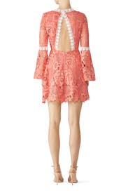 Pink Contrast Lace Dress by Alexia Admor