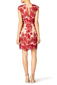 Mena Dress by Marchesa Notte