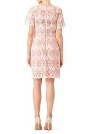 Laced Elora Dress by STYLESTALKER