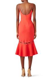 Phoenix Dress by Nicholas
