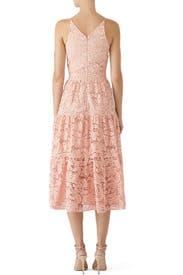 Rose Petal Alicia Dress by Dress The Population