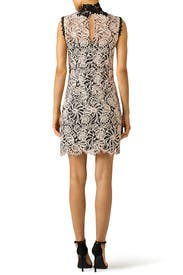 Lace Paramour Dress by Nanette Lepore