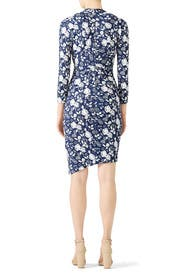 Blueprint Stefanie Dress by Nicole Miller