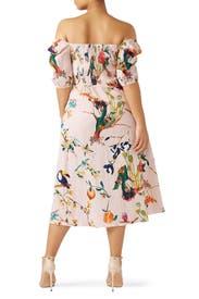 Lucinda Dress by Tanya Taylor