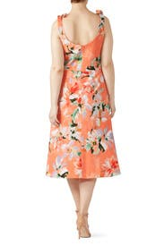 Hana Coral Floral Dress by Dress The Population