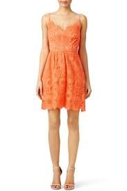 Orange Alcott Dress by Trina Turk