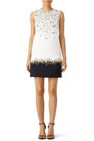 Fresh Flower Printed Shift Dress by Giambattista Valli