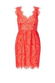 Lace Sierra Dress by Shoshanna