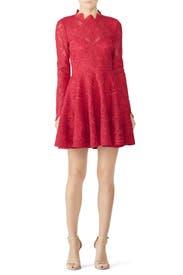 Raspberry Rita Dress by Saylor