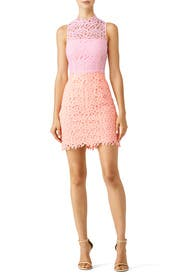 Pink Lace Colorblock Dress by Slate & Willow