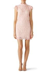 Blush Kara Lace Dress by Rachel Zoe