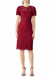 Collection Lace Sheath by Draper James