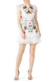 Lizah Dress by Saylor