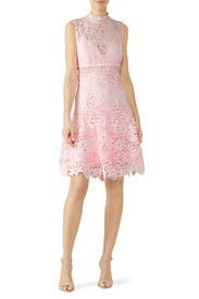 Elise Lace Dress by BARDOT