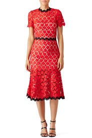 Cherry Lace Midi Dress by Jill Jill Stuart