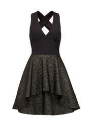 Slater Dress by Nicole Miller