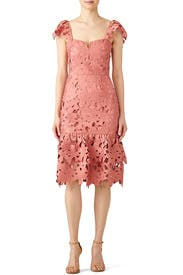 Pink Lace Donna Dress by Saylor