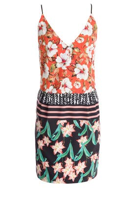 Floral Sunrise Slip Dress by Clover Canyon