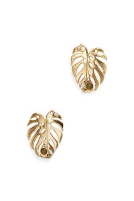 Gold Botanica Stud Earring by Lulu Frost