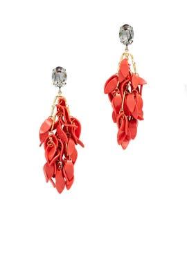 Orange Resin Earrings by Marni Accessories