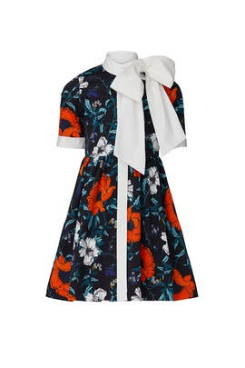 Kids Polly Dress by Harrison by Hunter Bell