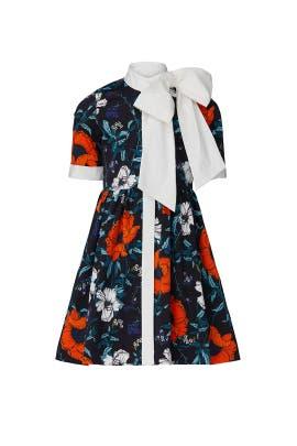 Kids Polly Dress by Harrison by Hunter Bell