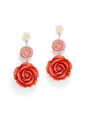 Pink Beck Earrings by Dannijo