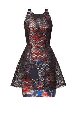 Dana Dress by Sachin & Babi