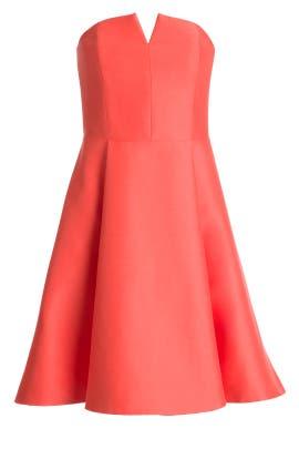 522a5504a6ae Halston Heritage. Read Reviews. Watermelon Dress