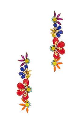 Multi Alva Earrings by Elizabeth Cole