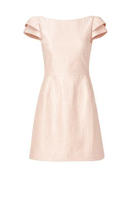 Blush Imprint Dress by HALSTON