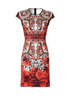 Rose Matador Dress by Clover Canyon