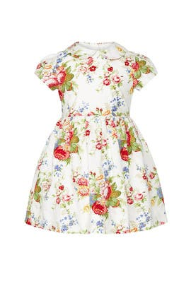 Kids Oxford Floral Dress by Ralph Lauren Kids