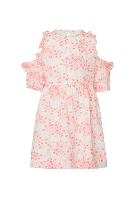 Kids Printed Nicole Dress by Crewcuts by J.Crew