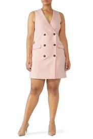 Pint Sleeveless Suit Dress by Badgley Mischka