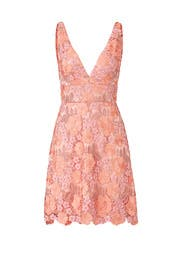 Guava Floral Lace Dress by Theia